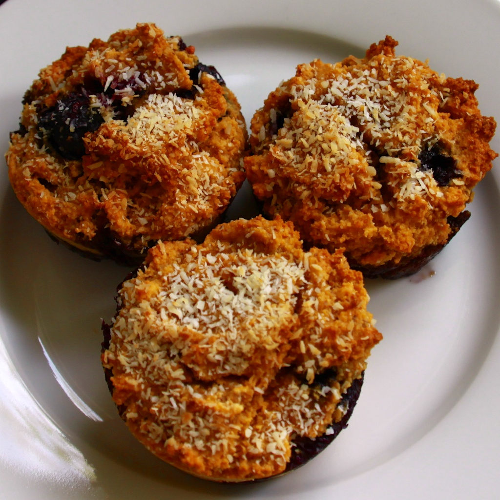 FLOURLESS BLUEBERRY ALMOND MUFFINS (GLUTEN FREE) – The Noble ...